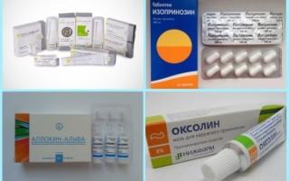 Противовирусные препараты и витамины от кондилом