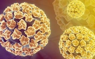 Какой ВПЧ вызывает рак: диагностика и лечение