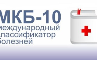 Код по МКБ-10: папиллома кожи